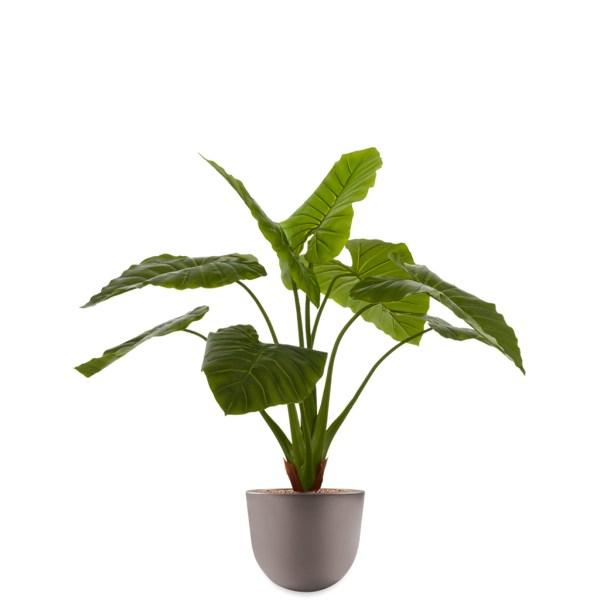 HTT - Kunstplant Philodendron in Eggy taupe H115 cm - kunstplantshop.nl