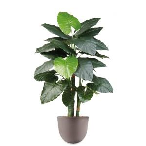 HTT - Kunstplant Philodendron in Eggy taupe H135 cm - kunstplantshop.nl