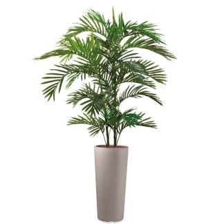 HTT - Kunstplant Areca palm in Clou rond taupe H185 cm - kunstplantshop.nl