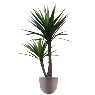 HTT - Kunstplant Yucca in Eggy taupe H130 cm - kunstplantshop.nl
