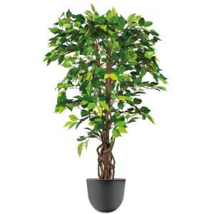 HTT - Kunstplant Ficus in Eggy antraciet H140 cm - kunstplantshop.nl