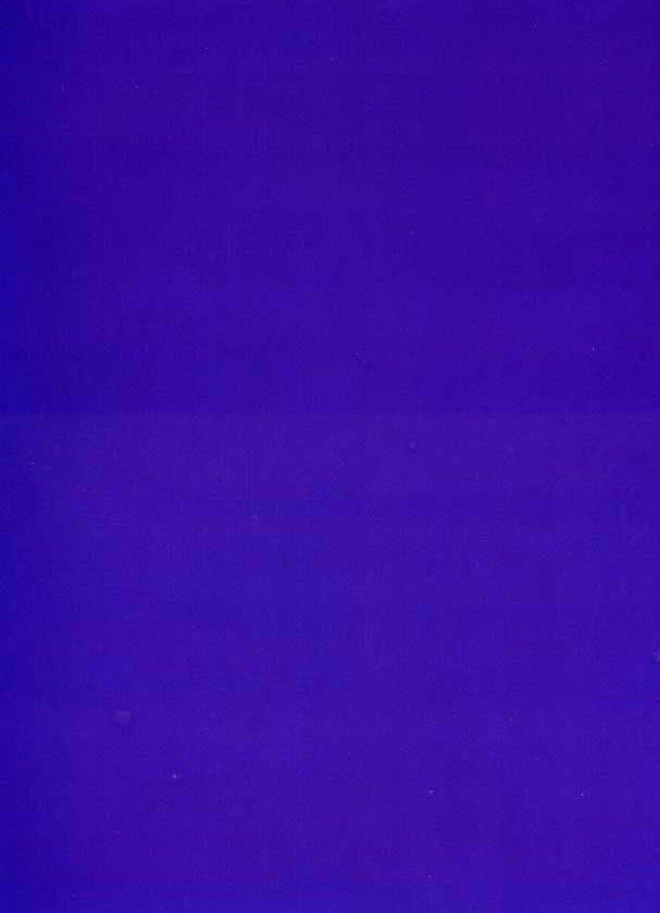 Monochrome Bleu - Yves Klein