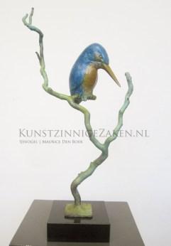 Bronzen-ijsvogel-op-tak_002