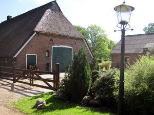 Galerie Drenthe Kunstenaar in Drenthe