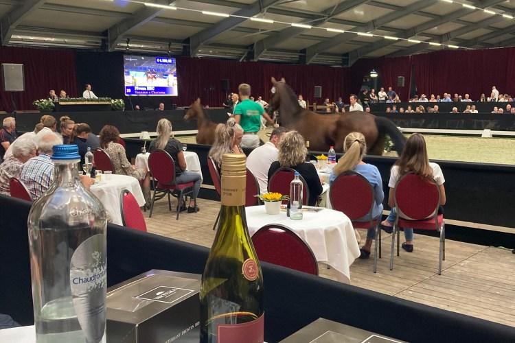 Starsale auctions Veiling Dronten Veulenveiling