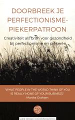 e-book voorkant Doorbreek je PerfectionismePiekerPatroon