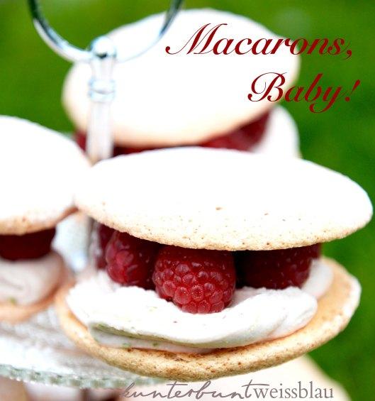 Macaron IV