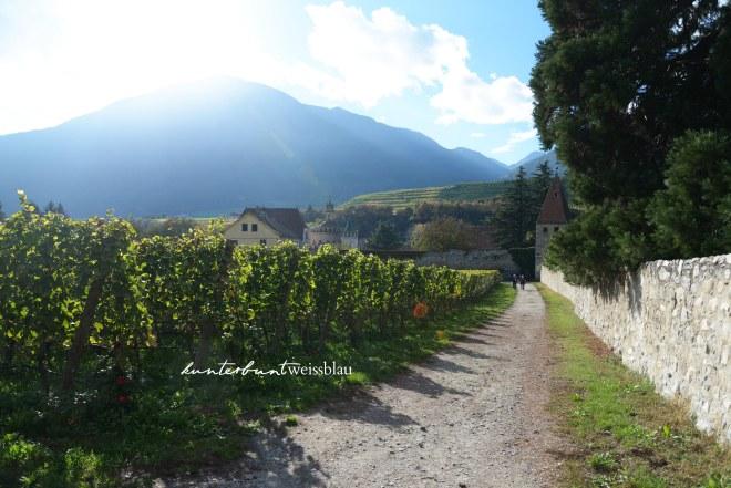 Kloster Neustift Wein