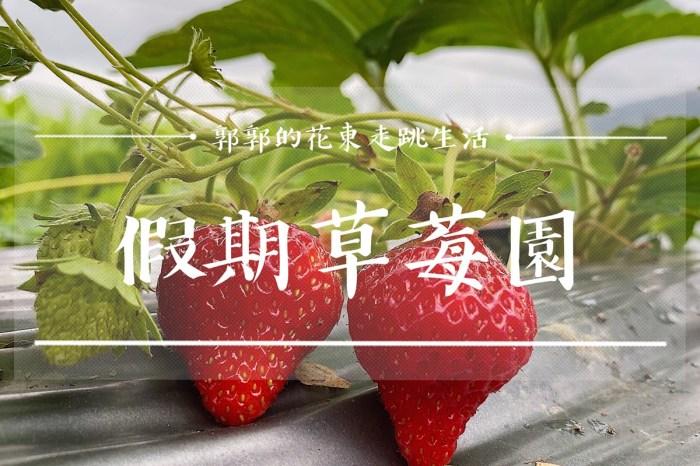 【花蓮遊記】假期草莓園┃推薦近兆豐農場享親子採草莓樂趣的果園┃