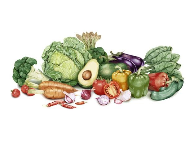 Hand drawn lot of vegetables free vector