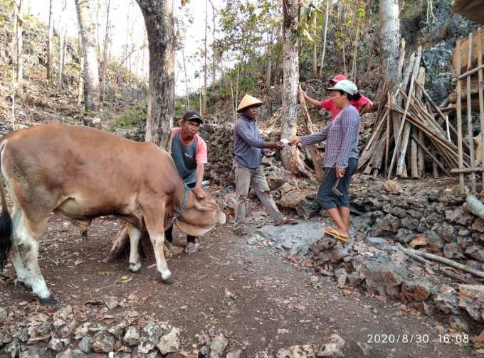 Kelompok Kube menjual ternak