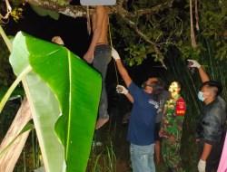 Diduga Gara – gara HP Eror, Seorang Pemuda nekat Gantung Diri di Pohon Jambu