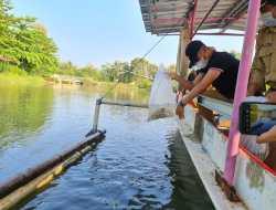 Getol Tebar Benih Ikan, Bupati Sebut Sebagai Cadangan Pangan Saat Pandemi Corona