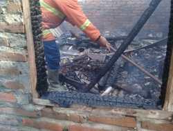 Lupa Matikan Tungku, Rumah Lansia Sebatangkara Ludes Dilalap Api