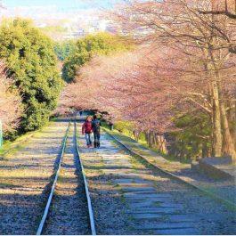 東山区の傾斜鉄道跡「蹴上インクライン」