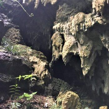 八重瀬町字新城に残る「ガラビガマ」