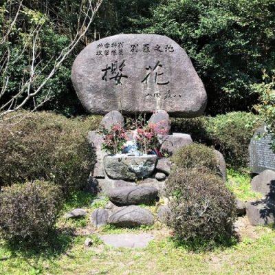 特攻隊員との決別の地「桜花の碑」