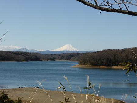 狭山湖と富士山