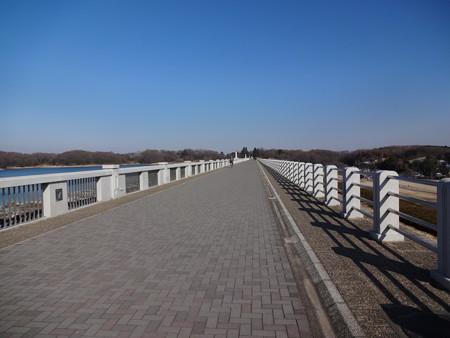 狭山湖堤防