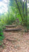 Stairs up to the Nunobiki Park