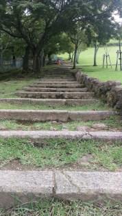 Stairs up to Mount Wakakusa
