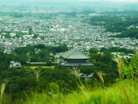 View on Nara - Mount Wakakusa