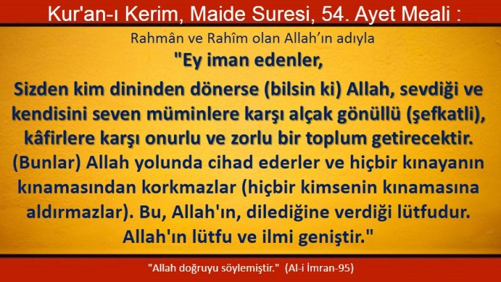maide 54