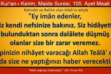 maide 105