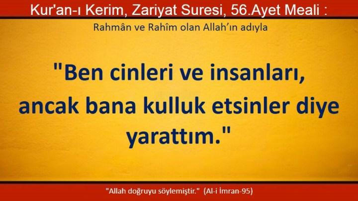 zariyat 56