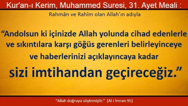 muhammed 31