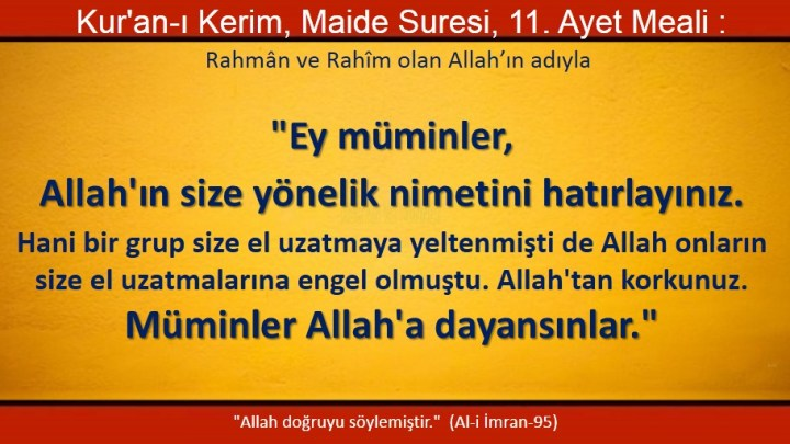 maide 11