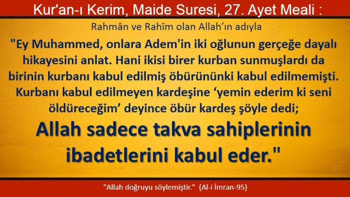 maide 27
