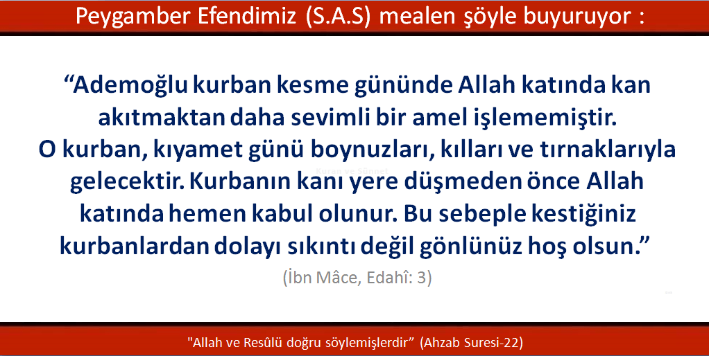 ibn-mace-edahi-3