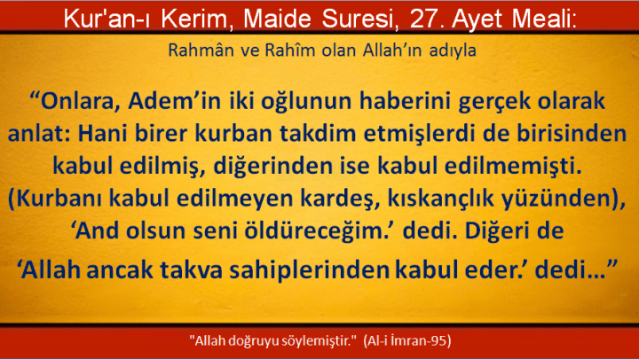 maide-27
