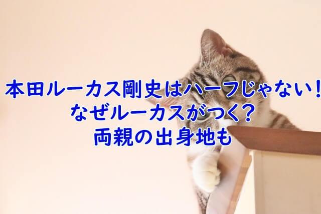 本田 ルーカス 剛史 ハーフ