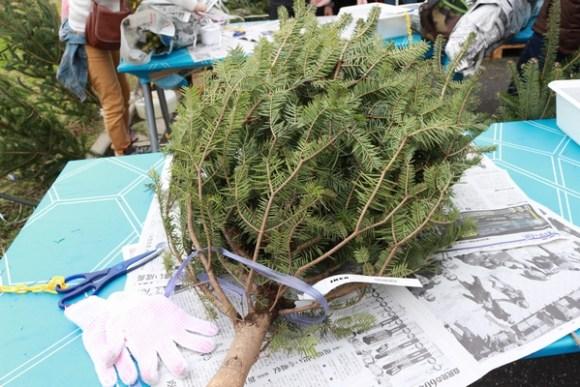 IKEAクリスマスツリーもみの木