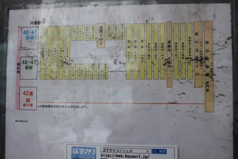 旭川駅バス停旭山動物園線