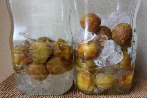 Plum syrup7day2