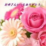 母の日の義母へのプレゼントや手紙の送り主は連名か夫か嫁かどうすればいい?