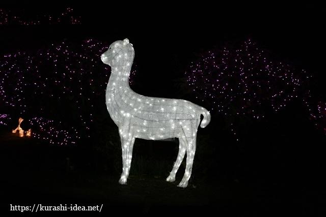 光の祭典生物園