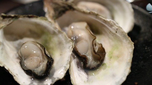 oyster-989179_640