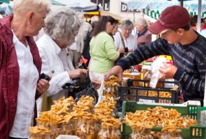 Jest ósma rano na rynku Kalwaryjskim. Stoły się uginają od grzybów Fot. Marian Paluszkiewicz