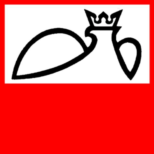 Przestrzeganie Praw Mniejszości Polskiej Na Litwie Raport