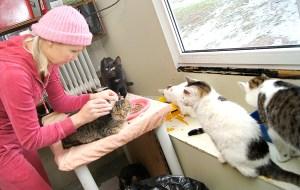 Pani Ilona zwierzętami opiekuje się, karmi, leczy, a najważniejsze udziela im dużo uwagi i serca Fot. Marian Paluszkiewicz