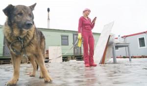 Zwierzę nie jest przedniotem, jest żywą istotą czującą ból i strach Fot. Marian Paluszkiewicz