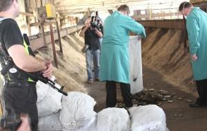Rekordową kontrabandę haszyszu zniszczono w piecach zakładów ceramiki pod nadzorem specjalnej komisji i w obstawie uzbrojonych ochroniarzy Fot. Marian Paluszkiewicz
