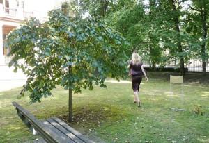 Miejsce, gdzie często siadywał Adam Mickiewicz, patrząc na Wilię Fot. Justyna Giedrojć