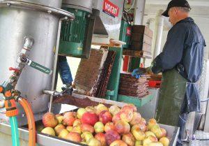 Ze wsparcia będą mogli skorzystać wszyscy producenci owoców i warzyw Fot. Marian Paluszkiewicz