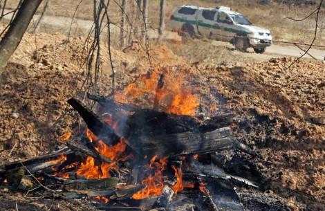 Za palenie liści, gałęzi, trawy czy innych odpadów oraz suchej trawy na polu grozi kara od 5 do 579 euro Fot. Marian Paluszkiewicz