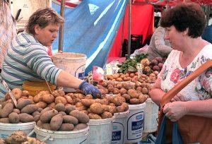 W tym roku warzywa zdrożały w sklepie i na rynku Fot. archiwum